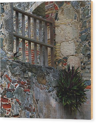 Wood Print featuring the photograph Annaberg Ruin Brickwork At U.s. Virgin Islands National Park by Jetson Nguyen