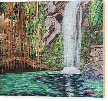 Annandale Waterfall Wood Print