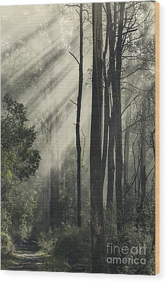 Anothen Wood Print by Andrew Paranavitana