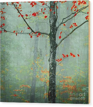 Another Day Another Fairytale Wood Print by Katya Horner