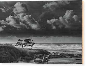 Wood Print featuring the photograph Another Day At Kalaloch Beach by Dan Mihai