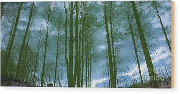 Another Place And Time Wood Print