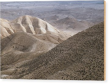 Another View From Masada Wood Print