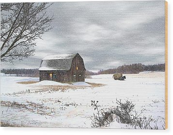 Another Winter Day Wood Print by Gary Smith