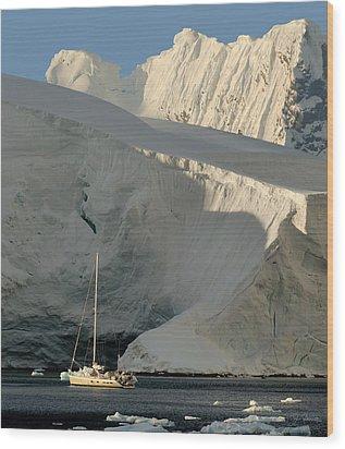 Antarctic No. 7 Wood Print by Joe Bonita