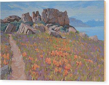 Antelope Island Outcrop Wood Print
