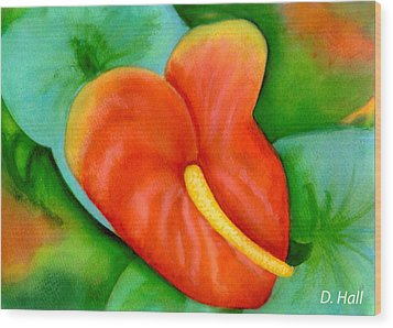 Anthurium Flowers #228 Wood Print by Donald k Hall