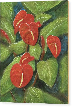 Anthurium Flowers #231 Wood Print by Donald k Hall