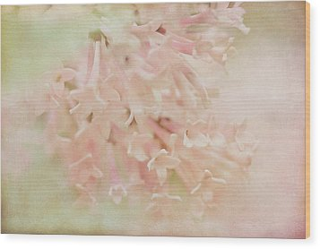 Wood Print featuring the photograph Anticipation  by Connie Handscomb