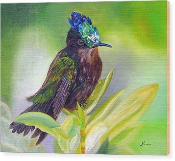 Antillean Crested Hummingbird Wood Print