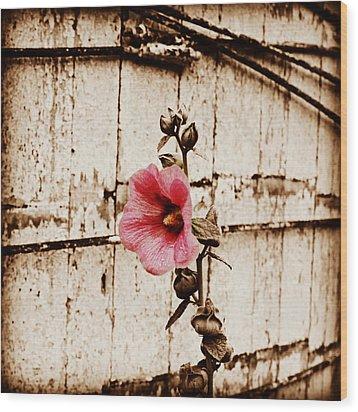 Antique Flower Wood Print by Julie Hamilton
