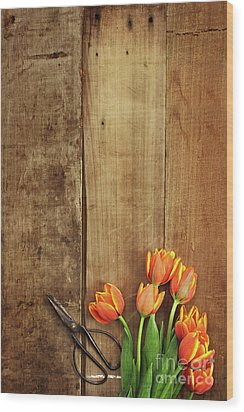 Wood Print featuring the photograph Antique Scissors And Tulips by Stephanie Frey
