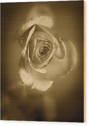 Antique Soft Rose Wood Print by M K  Miller