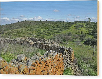 Antique Stone Wall Of An Old Farm Wood Print by Angelo DeVal