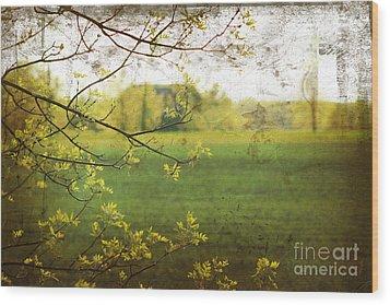 Antiqued Grunge Landscape Wood Print by Sandra Cunningham