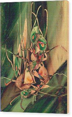 Antsy Lovers Wood Print