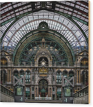 Antwerp Train Terminal Wood Print by Doug Sturgess