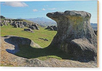 Anvil Rock Wood Print
