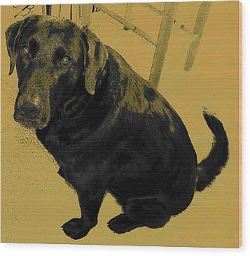 Any Chance I Can Go With You Wood Print by Lenore Senior