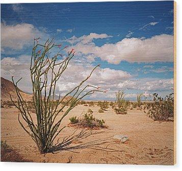 Anza Borrego Desert Wood Print