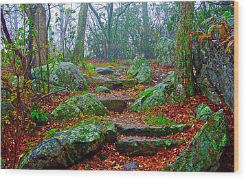 Appalachain Trail In The Clouds Wood Print by The American Shutterbug Society