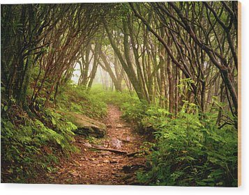 Appalachian Hiking Trail - Blue Ridge Mountains Forest Fog Nature Landscape Wood Print
