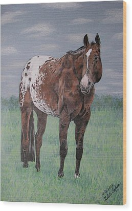 Appaloosa Wood Print by Melita Safran