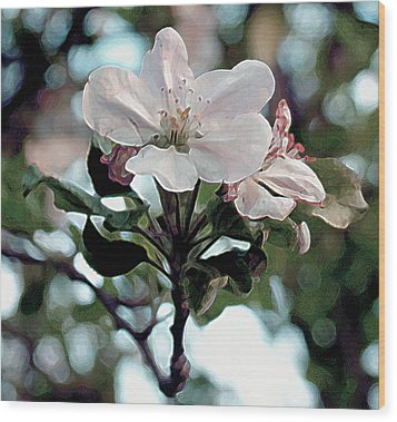 Apple Blossom Time Wood Print by RC deWinter