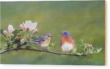 Apple Blossoms And Bluebirds Wood Print