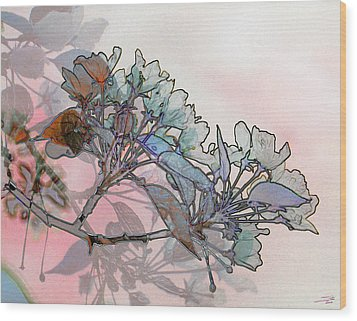 Apple Blossoms Wood Print by Stuart Turnbull