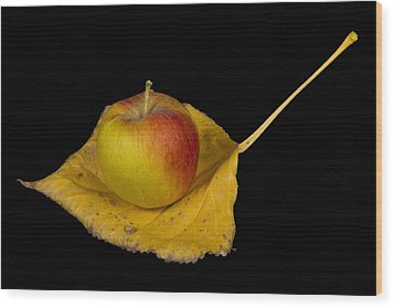 Apple Harvest Autumn Leaf Wood Print by James BO  Insogna