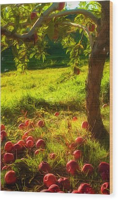 Apple Picking Wood Print by Joann Vitali