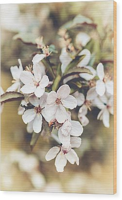 Wood Print featuring the photograph Apple Spice by Christi Kraft