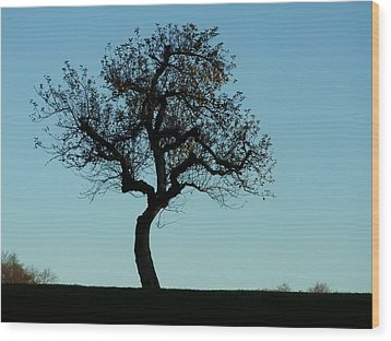 Apple Tree In November Wood Print by Ernst Dittmar