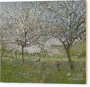Apple Trees In Flower Wood Print by Ernest Quost