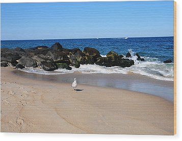 Wood Print featuring the photograph Approaching Seagull by JoAnn Lense