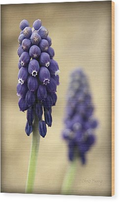 Wood Print featuring the photograph April Indigo by Chris Berry