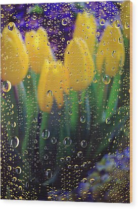 April Showers Wood Print by Linda Mishler