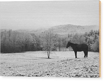 April Snow Wood Print