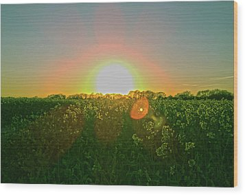 Wood Print featuring the photograph April Sunrise by Anne Kotan