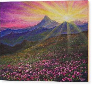 April Sunset Wood Print by C Steele
