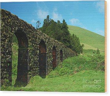 Aqueduct Wood Print by Gaspar Avila