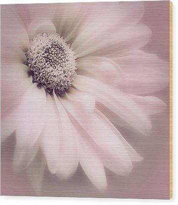 Wood Print featuring the photograph Arabesque In Ballet Pink by Darlene Kwiatkowski