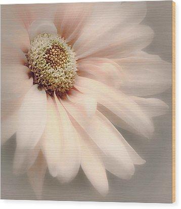 Wood Print featuring the photograph Arabesque In Peach Glow by Darlene Kwiatkowski