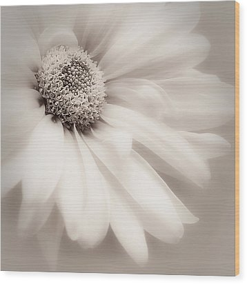Wood Print featuring the photograph Arabesque In Soft Charcoal by Darlene Kwiatkowski