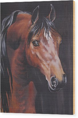 Arabian Horse 1 Wood Print