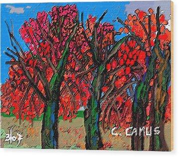 Arboles - Figuras Wood Print by Carlos Camus