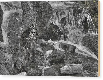 Arboretum Waterfall Bw Wood Print by Richard J Cassato