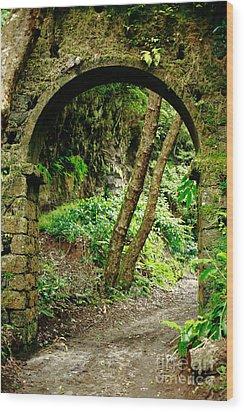 Arch Wood Print by Gaspar Avila