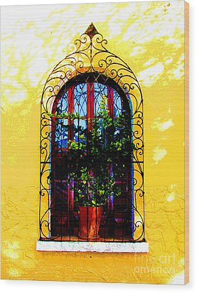 Arched Window By Darian Day Wood Print by Mexicolors Art Photography